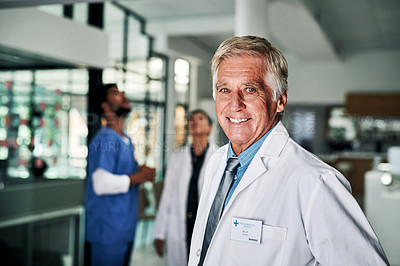 Buy stock photo Cropped portrait of a handsome mature male doctor smiling while standing in a hospital with his colleagues in the background