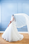 This veil is my favourite thing about this dress