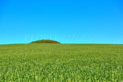 Buy stock photo Ancient Viking burial mound in the countryside - Denmark