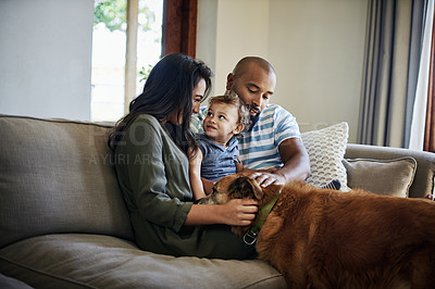 Buy stock photo Cropped shot of an affectionate young couple spending time with their little son and dog at home