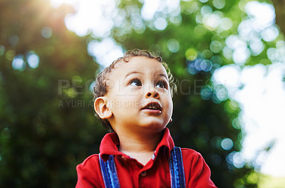 Buy stock photo Cropped shot of an adorable little boy enjoying a day outdoors