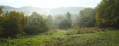 Buy stock photo A landscape morning photo - fog