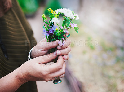 Buy stock photo Cropped shot of an unrecognizable woman holding plucked flowers in her hands