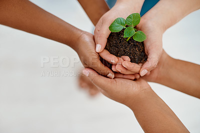 Buy stock photo Cropped shot of three unrecognizable businesswomen holding a plant growing out of soil inside an office