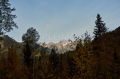 Buy stock photo Shot of beautiful mountain and forest scenery outdoors in the East Kootenay region of British Columbia, Canada