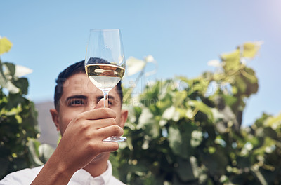 Buy stock photo Cropped shot of a handsome young man having a glass of wine on a vineyard