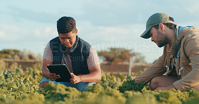 Buy stock photo Cropped shot of a handsome young male farmer using a digital tablet while working with his colleague in a crop field