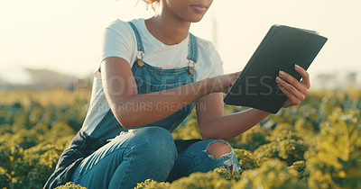 Buy stock photo Cropped shot of an unrecognizable young female farmer using a digital tablet while working in a crop field