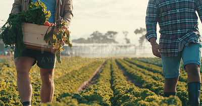 Buy stock photo Cropped shot of two unrecognizable male farmers walking through a crop field