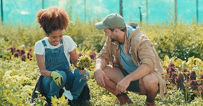 Buy stock photo Full length shot of two young farmers working together in a crop field during the day