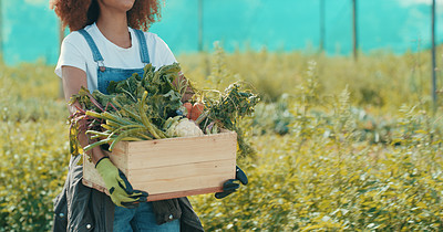 Buy stock photo Cropped shot of an unrecognizable female farmer holding a crate filled with vegetables while working in a crop field
