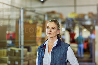 Buy stock photo Cropped shot of an attractive mature supervisor standing alone and looking contemplative in her warehouse