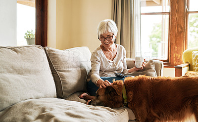 Buy stock photo Cropped shot of a happy senior woman sitting alone and petting her dog during a day at home
