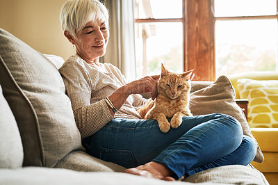 Buy stock photo Cropped shot of a happy senior woman sitting alone and petting her cat during a day at home
