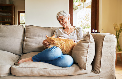 Buy stock photo Full length shot of a happy senior woman sitting alone and petting her cat during a day at home