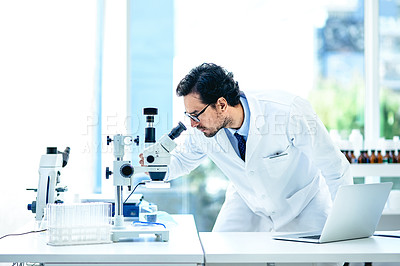 Buy stock photo Shot of a young scientist using a microscope and laptop in a lab
