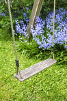 Sling an Bluebells in my garden