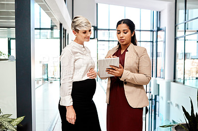 Buy stock photo Shot of two businesswomen using a digital tablet together in an office