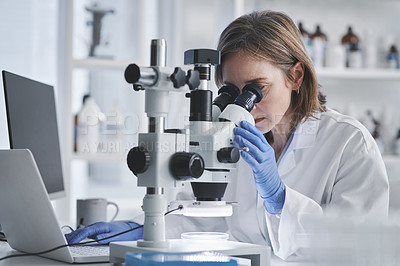 Buy stock photo Shot of a mature scientist using a laptop and microscope in a lab