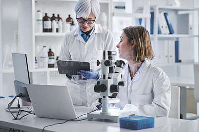 Buy stock photo Shot of two mature scientists working together in a lab
