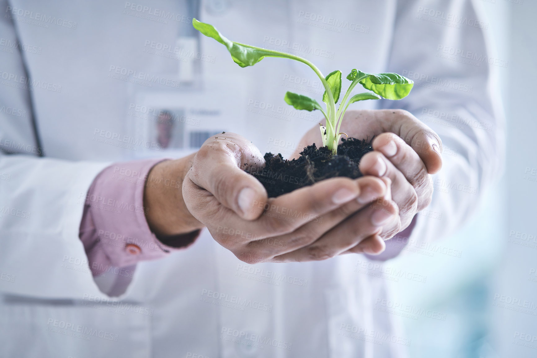 Buy stock photo Closeup shot of an unrecognisable scientist holding a plant growing in soil