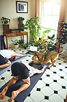 Yoga? Yeah dog, I'm down with that