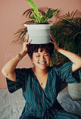 Buy stock photo Shot of a beautiful young woman posing with a houseplant on her head