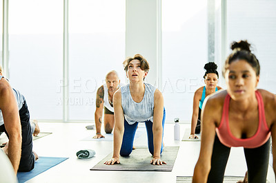 Buy stock photo Shot of a group of women practicing yoga in a fitness class