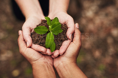 Buy stock photo Cropped shot of two unrecognisable women holding a plant growing out of soil in nature