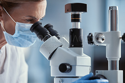 Buy stock photo Shot of a mature scientist using a microscope while working in a laboratory