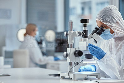 Buy stock photo Shot of a young scientist using a microscope while working in a laboratory