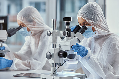 Buy stock photo Shot of two scientists using microscopes while working in a laboratory
