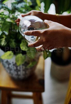 Buy stock photo Closeup shot of an unrecognisable woman watering a plant at home