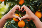 For the love of oranges
