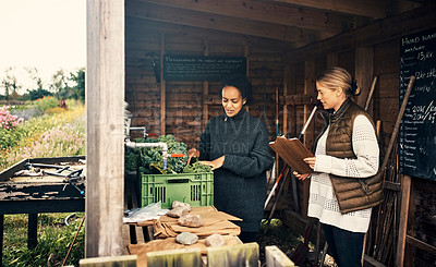 Buy stock photo Shot of two young women working together on a farm