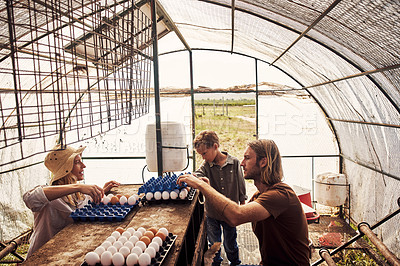 Buy stock photo Shot of a family sorting eggs in a farm shed