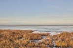 Danish Winter landscape by the coast of Kattegat