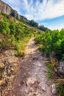 Buy stock photo Mountain trail - Table Mountain National Park, Cape Town, Western Province, South Africa