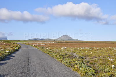 Buy stock photo Road through the wilderness of Cape Point National Park, Western Cape, South Africa