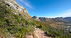 Mountain trails - Lion's Head and Table Mountaion