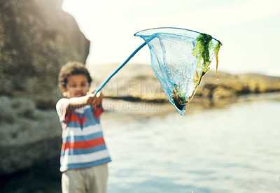 Buy stock photo Shot of a young boy holding a fishing net at the beach