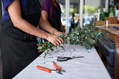 Buy stock photo Shot of two unrecognizable women pruning the flowers at her job in a floral store