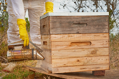 Buy stock photo Shot of an unrecognisable beekeeper using a bee smoker under a hive frame on a farm