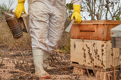 Buy stock photo Shot of an unrecognisable beekeeper using a bee smoker while working on a farm