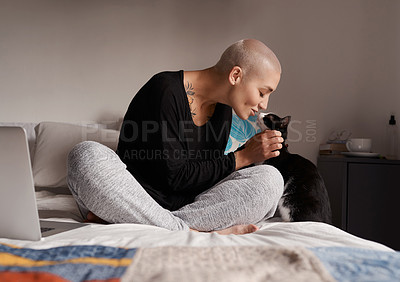 Buy stock photo Shot of a young woman sitting on her bed with her cat