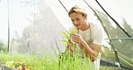 Creating a thriving ecosystem in his greenhouse
